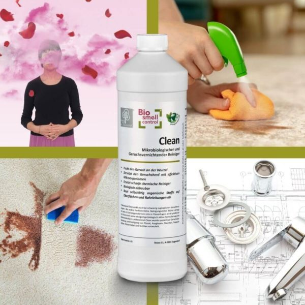 geruchsbeseitigung clean